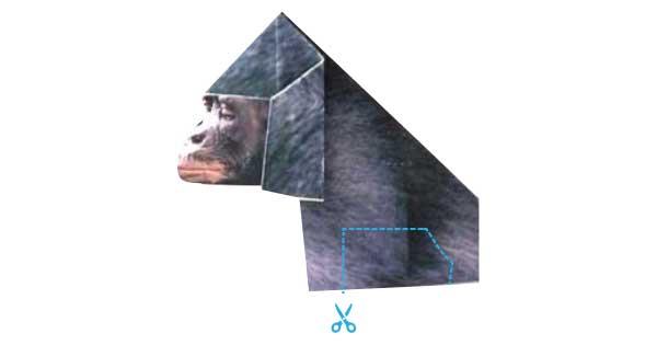 ゴリラのプリント折り紙の下をキリトリ