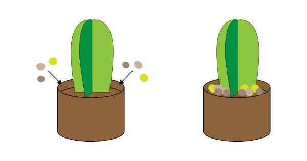 立体サボテンの作り方.6【簡単切り紙】