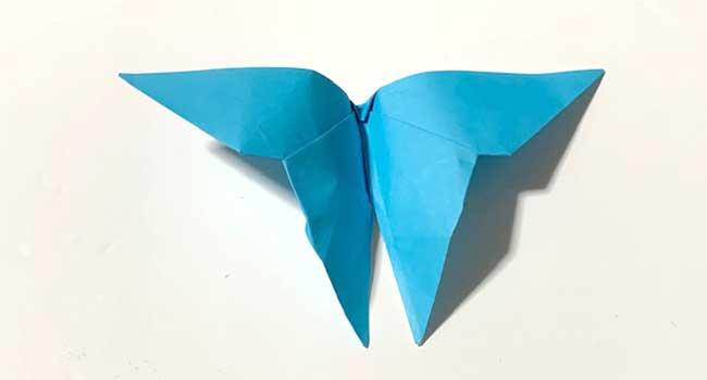 折り紙で簡単に作れる蝶の折り方11